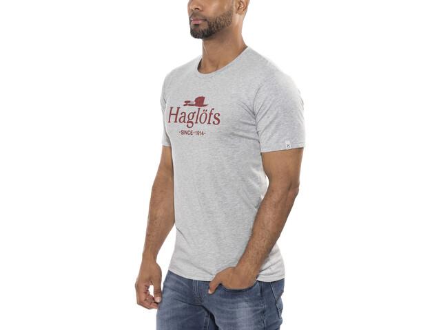 Haglöfs Camp Camiseta Hombre, grey melange